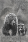 Wildlife;art;artwork;painting;drawing;Katmai-Bear;Grizzly-Bear;Coastal-Brown-Bear;Corel-Painter