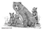 wildlife;Bear;Grizzly-Bear;Cubs;Pen-and-Ink;Ink-Drawing;Art;Artwork;Drawing