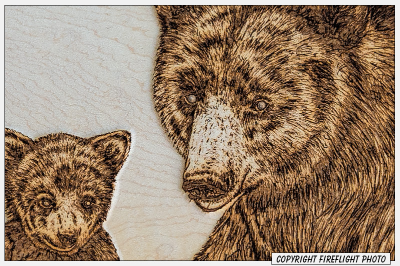 Detail of pyrography artwork